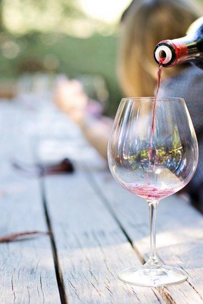 Quels sont les débouchés d'une formation dans la filière viticole?